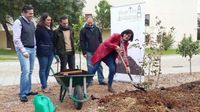 Photo of El Ayuntamiento promoverá huertos urbanos comunitarios
