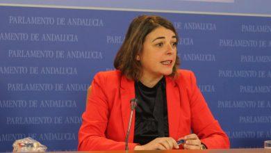 Photo of El grupo parlamentario de IULV-CA preguntará a Educación por las demandas del AMPA del CEIP Noreña en Córdoba
