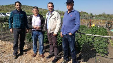Photo of IULV-CA potencia los huertos sociales municipales a través del Centro Agropecuario de la Diputación