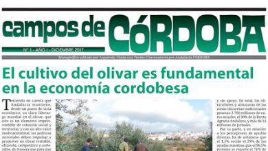 Photo of Campos de Córdoba – nº 1