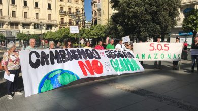 Photo of IU se suma a la declaración de Emergencia Climática