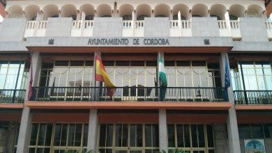 Photo of IU planteará enmiendas al presupuesto del Ayuntamiento de Córdoba para «defender las empresas públicas, la política social y la economía local»