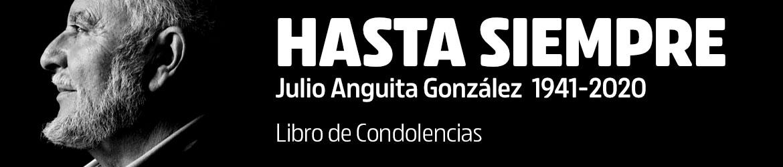Hasta siempre Julio Anguita