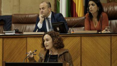 Photo of Adelante pedirá explicaciones al Gobierno andaluz por permitir que el expediente de Cosmos caduque sin imponer a la empresa un control de emisiones