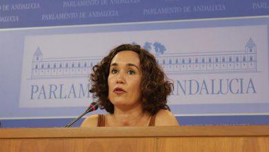 Photo of La tasa de desempleo de las mujeres cordobesas está diez puntos por encima de la nacional
