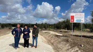 Photo of Infraestructuras Rurales lleva al Pleno de la Diputación la aprobación del Plan de Mejora de los Caminos Municipales para 2020 y 2021