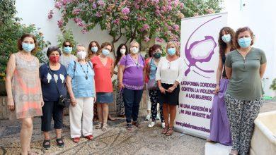 Photo of La Diputación y la Plataforma Contra la Violencia a las Mujeres diseñan una hoja de ruta con numerosas actividades que culminarán el 25 N