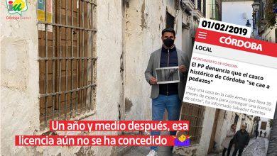 """Photo of IU denuncia el """"colapso absoluto y sin parangón en épocas anteriores"""" en la concesión de licencias"""
