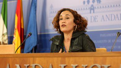 """Photo of IU pide al Gobierno andaluz """"colaboración"""" con el Estado para desarrollar en Andalucía políticas de Igualdad y conciliación"""